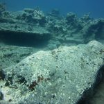 diving-tenerife-Crocodile-Rock-dive-site-3