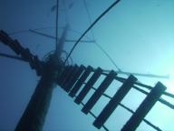 diving-tenerife-el_meridian_dive_site