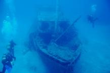 diving-tenerife-el_meridian_dive_site_tenerife