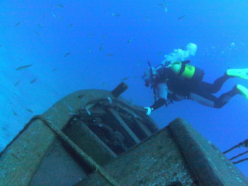 diving-tenerife-estorne-dive-site-4