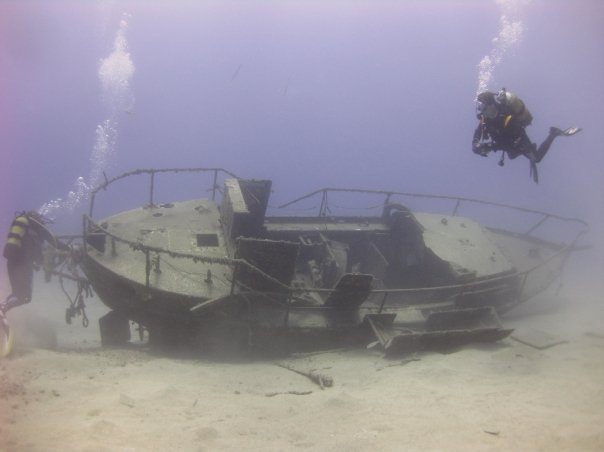 diving-tenerife-estorne-dive-site