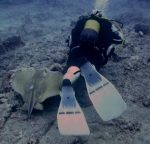 diving-tenerife-loschurchos-dive-site-1