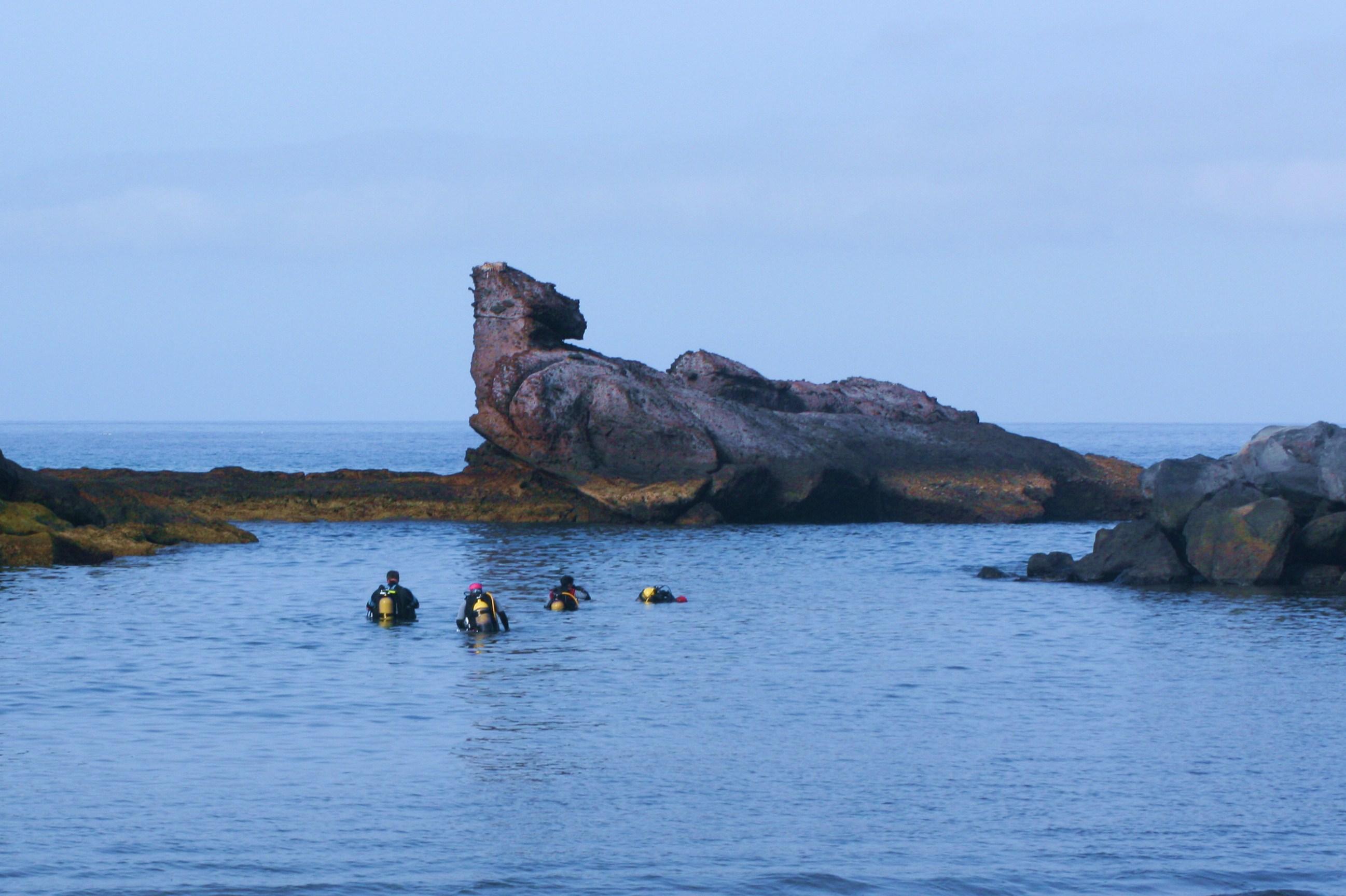diving-tenerife-playa_paraiso-beach