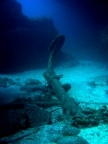 diving-tenerife-playa_paraiso_anchor