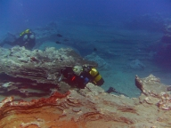 diving-tenerife-yellow-mountain-dive-site