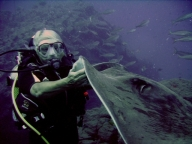 5_round_ray14_tenerife_diving