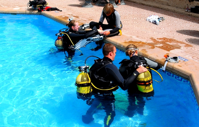 Diving-Tenerife-Divemaster-PADI-Dive-And-Sea