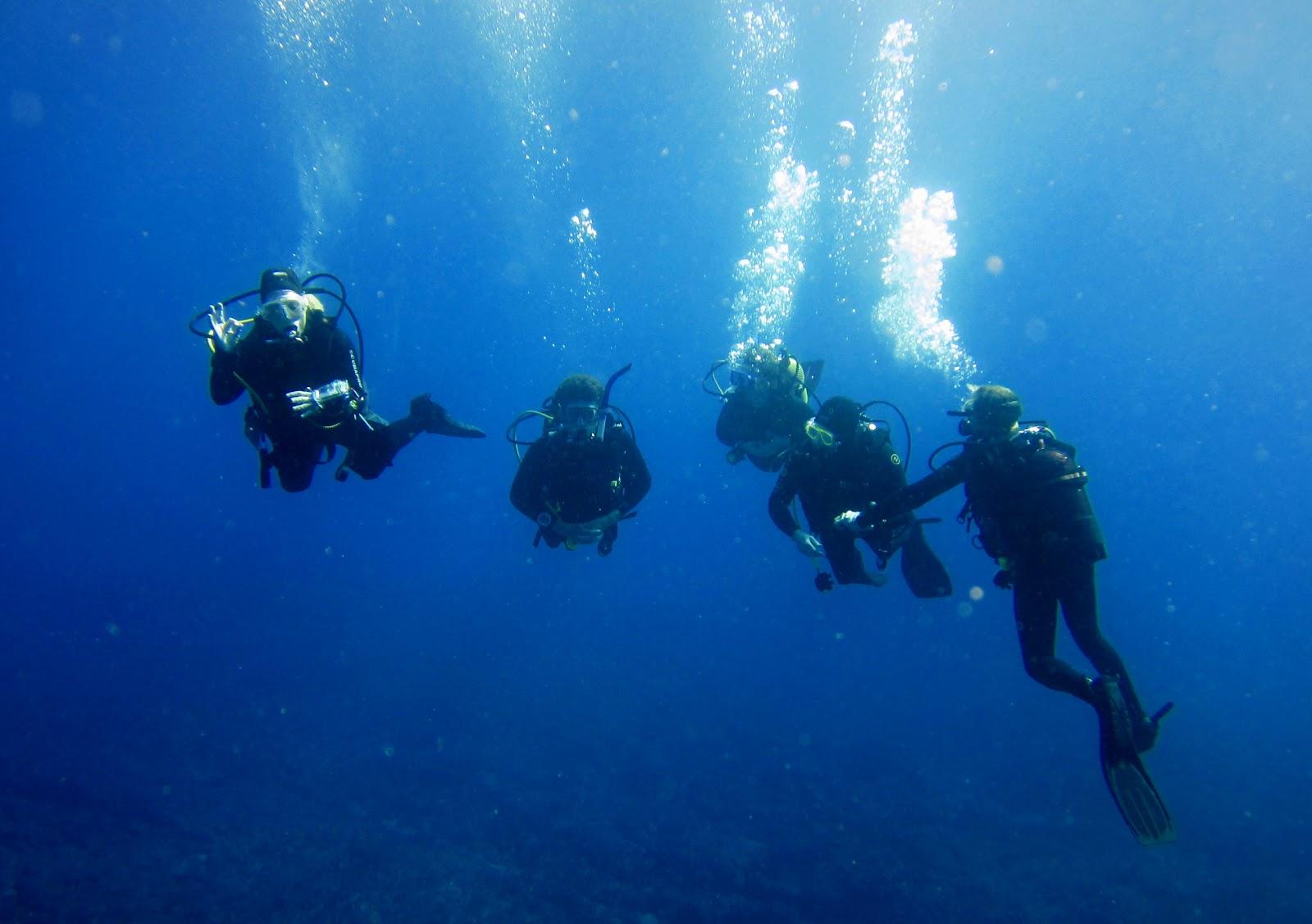 Diving Tenerife Divemaster