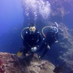 Diving-Tenerife-Divers (19)