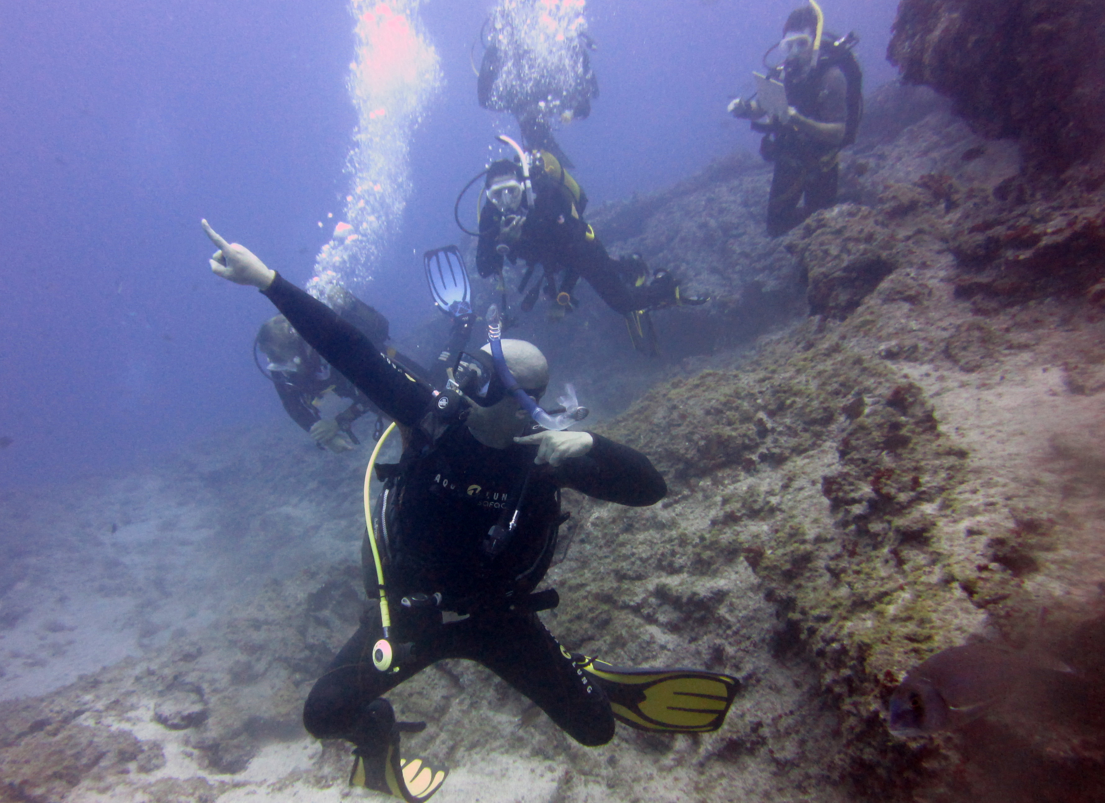 Diving-Tenerife-Divers (21)