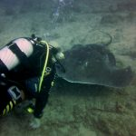 Diving-Tenerife-Divers (22)