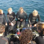 Diving-Tenerife-Divers (25)