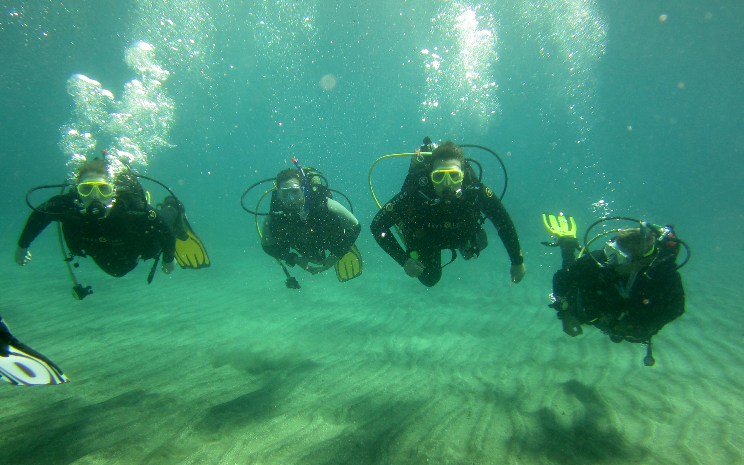 Diving-Tenerife-Divers (26)
