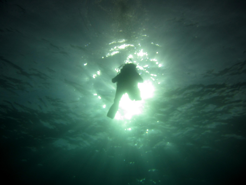 Diving-Tenerife-Divers_PADI