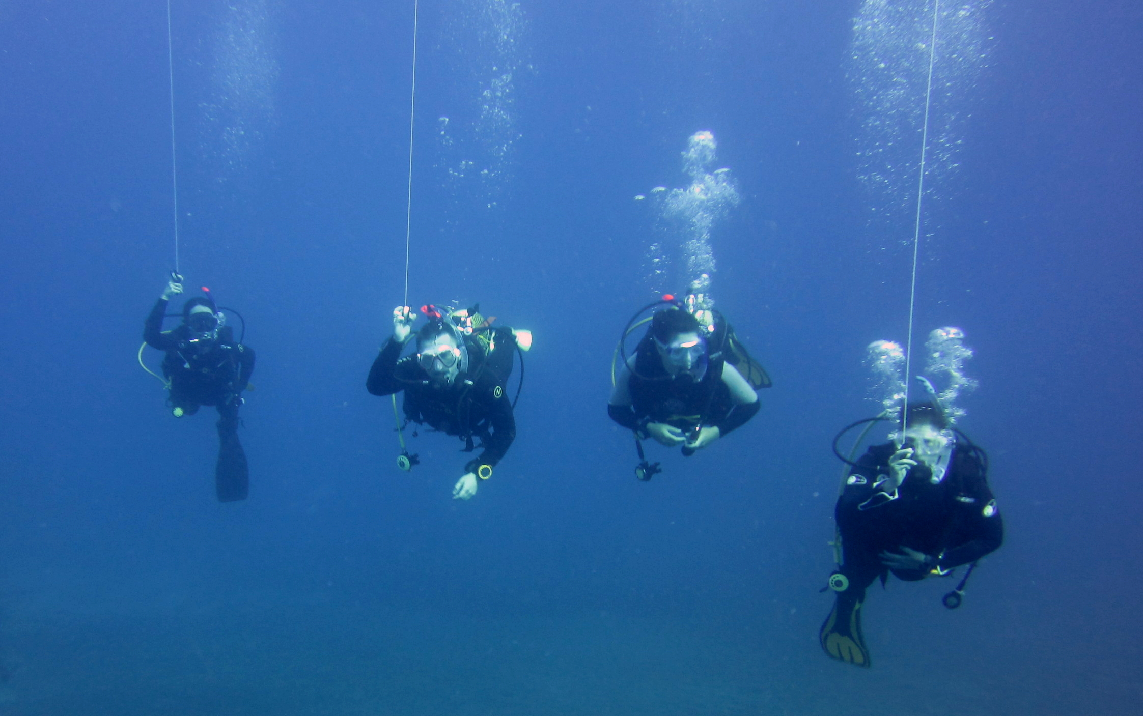 Diving-Tenerife-Divers (29)