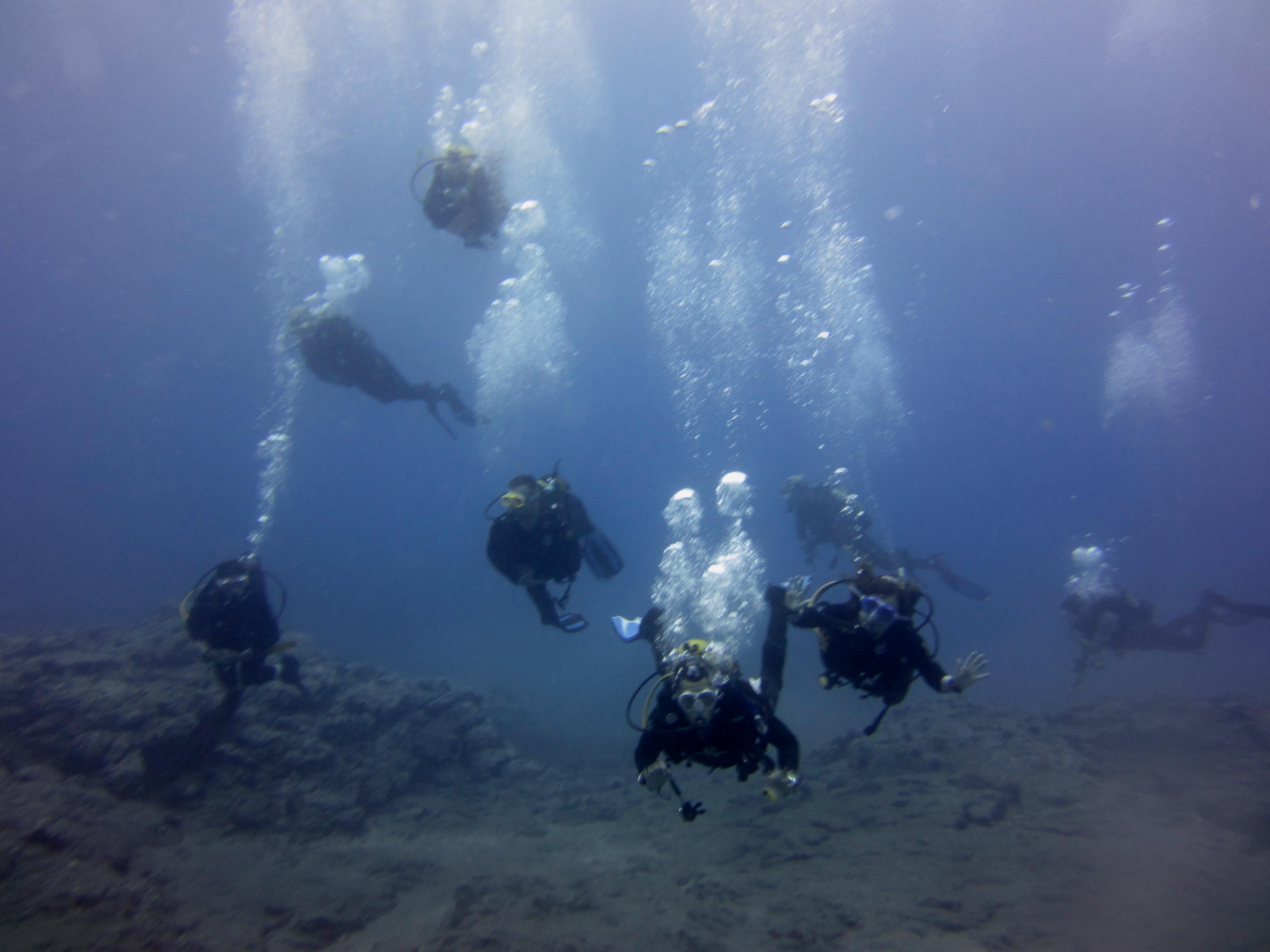Diving-Tenerife-Divers (39)