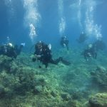 Diving-Tenerife-Divers (40)