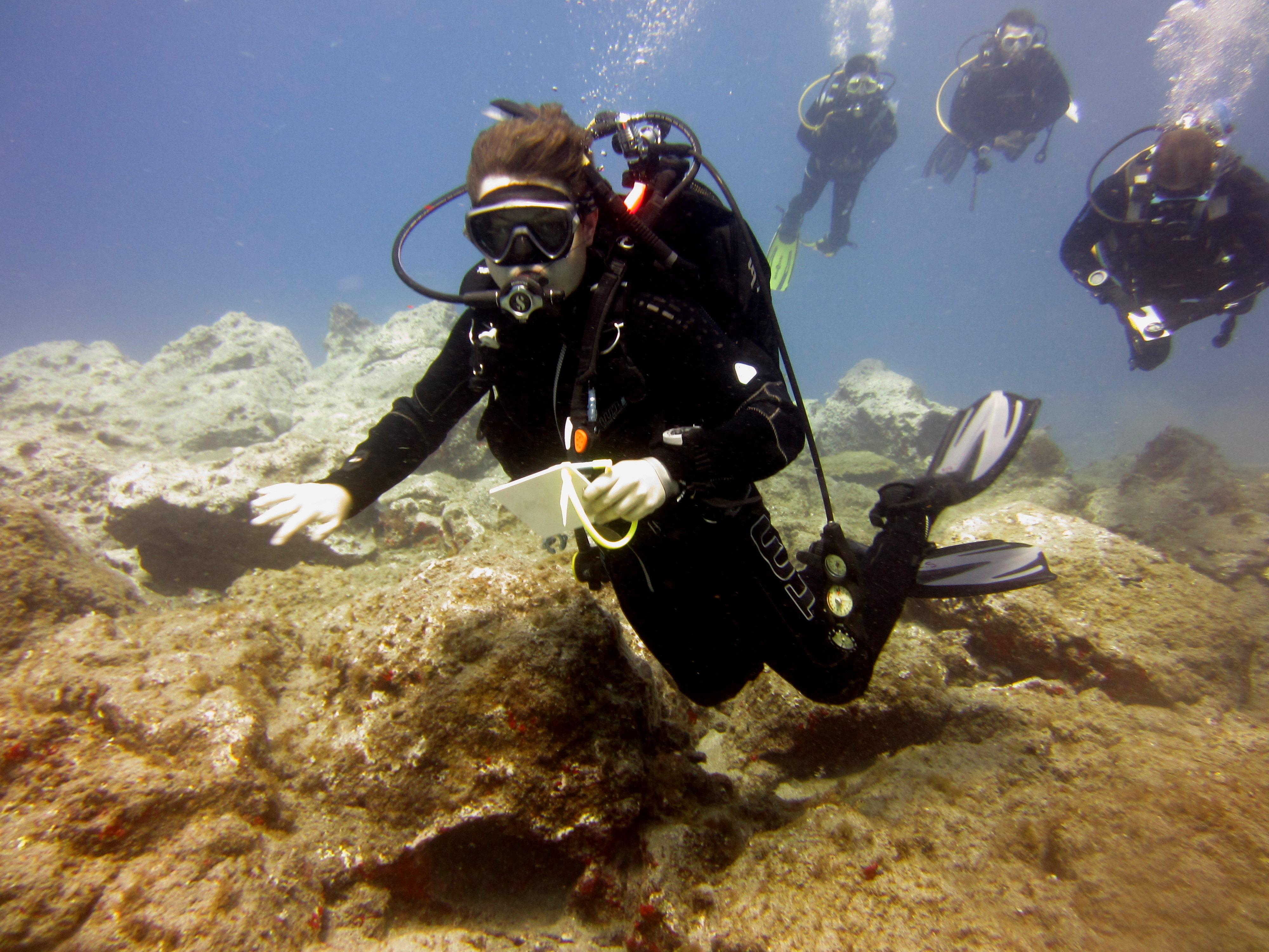 Diving-Tenerife-Divers (43)