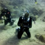 Diving-Tenerife-Divers (44)
