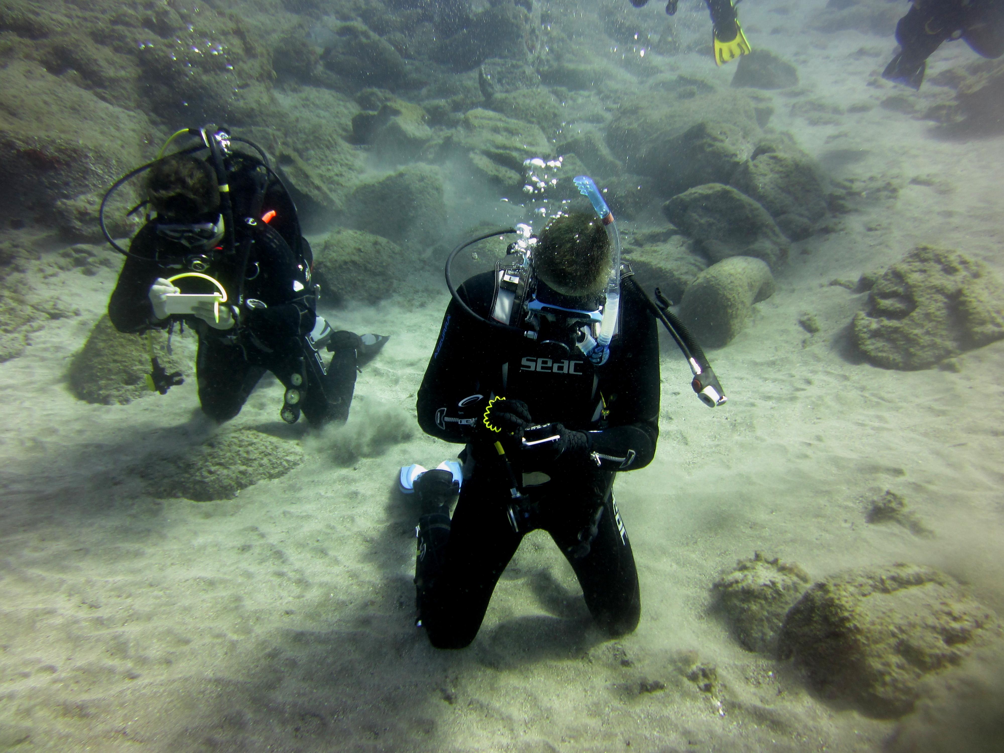 Diving-Tenerife-Divers (44)