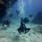 Diving-Tenerife-Divers (45)