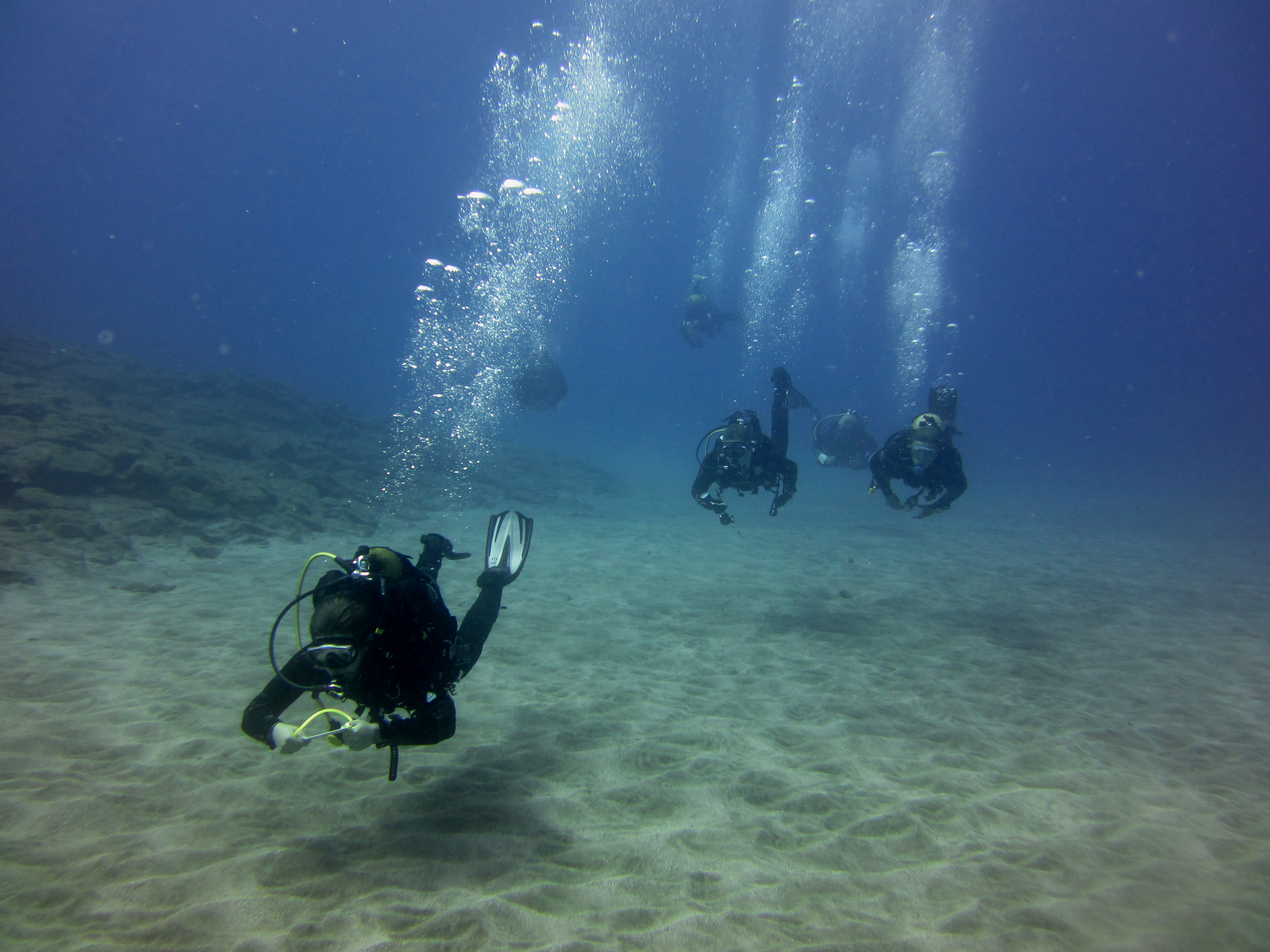 Diving-Tenerife-Divers (46)