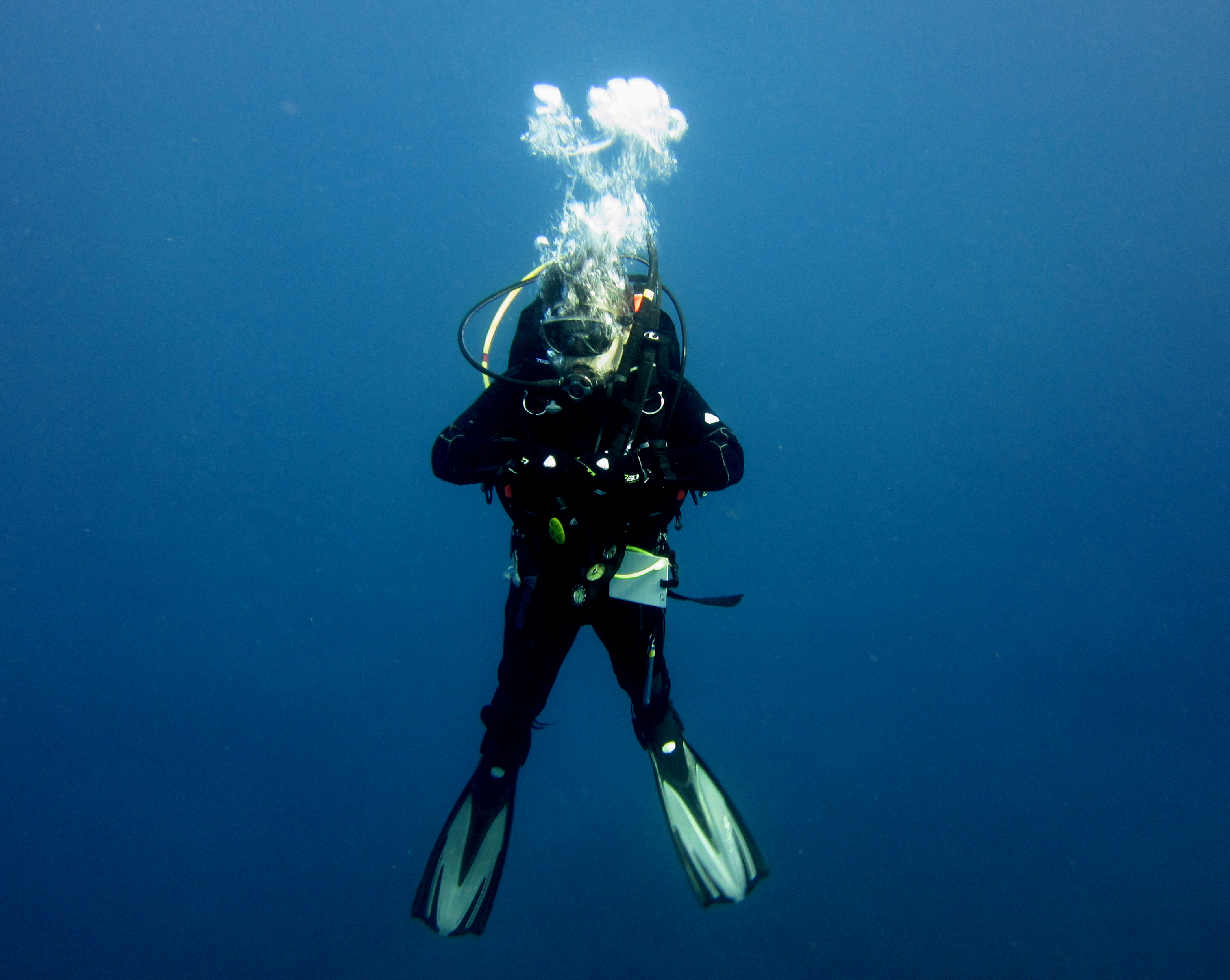 Diving-Tenerife-Divers (47)