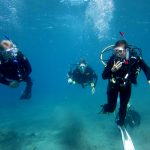 Diving-Tenerife-Divers (55)