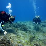 Diving-Tenerife-Divers (58)