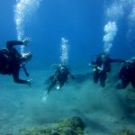 Diving-Tenerife-Divers (59)