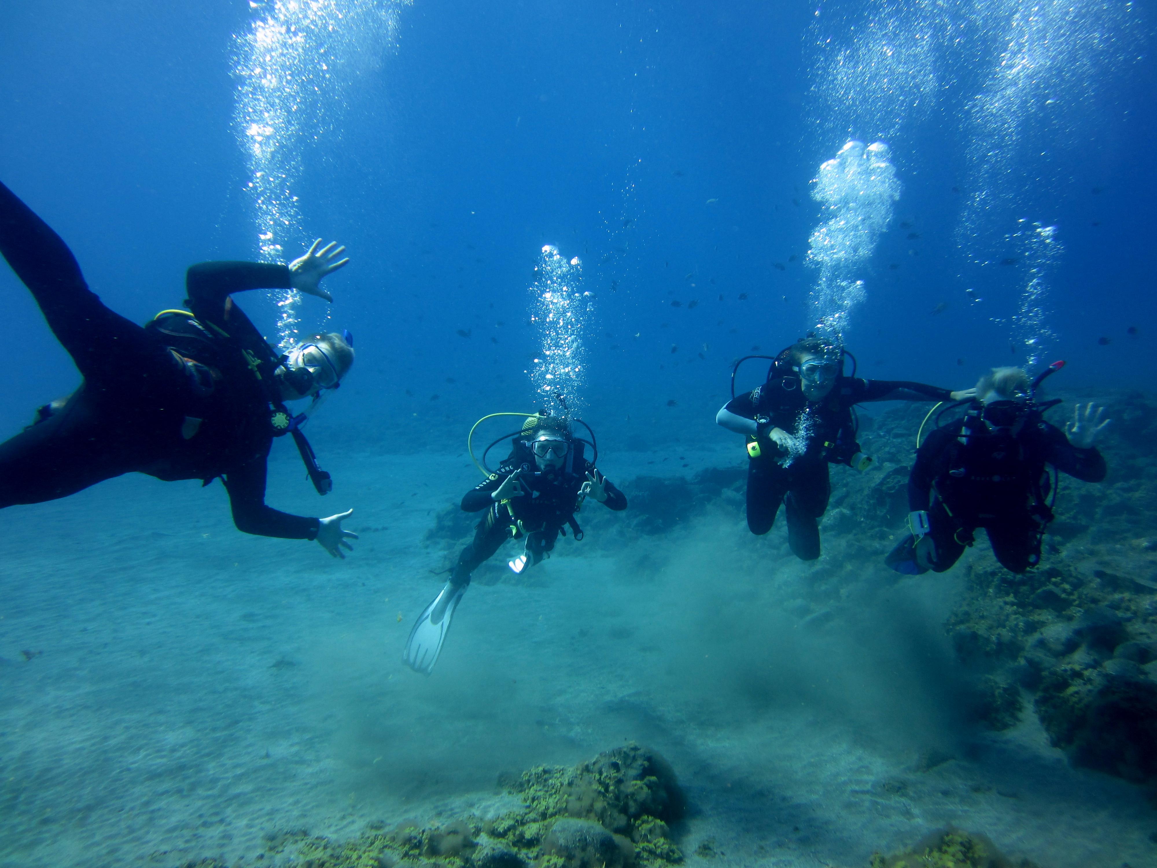 Diving-Tenerife-Divers (59)