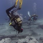 Diving-Tenerife-Divers-6