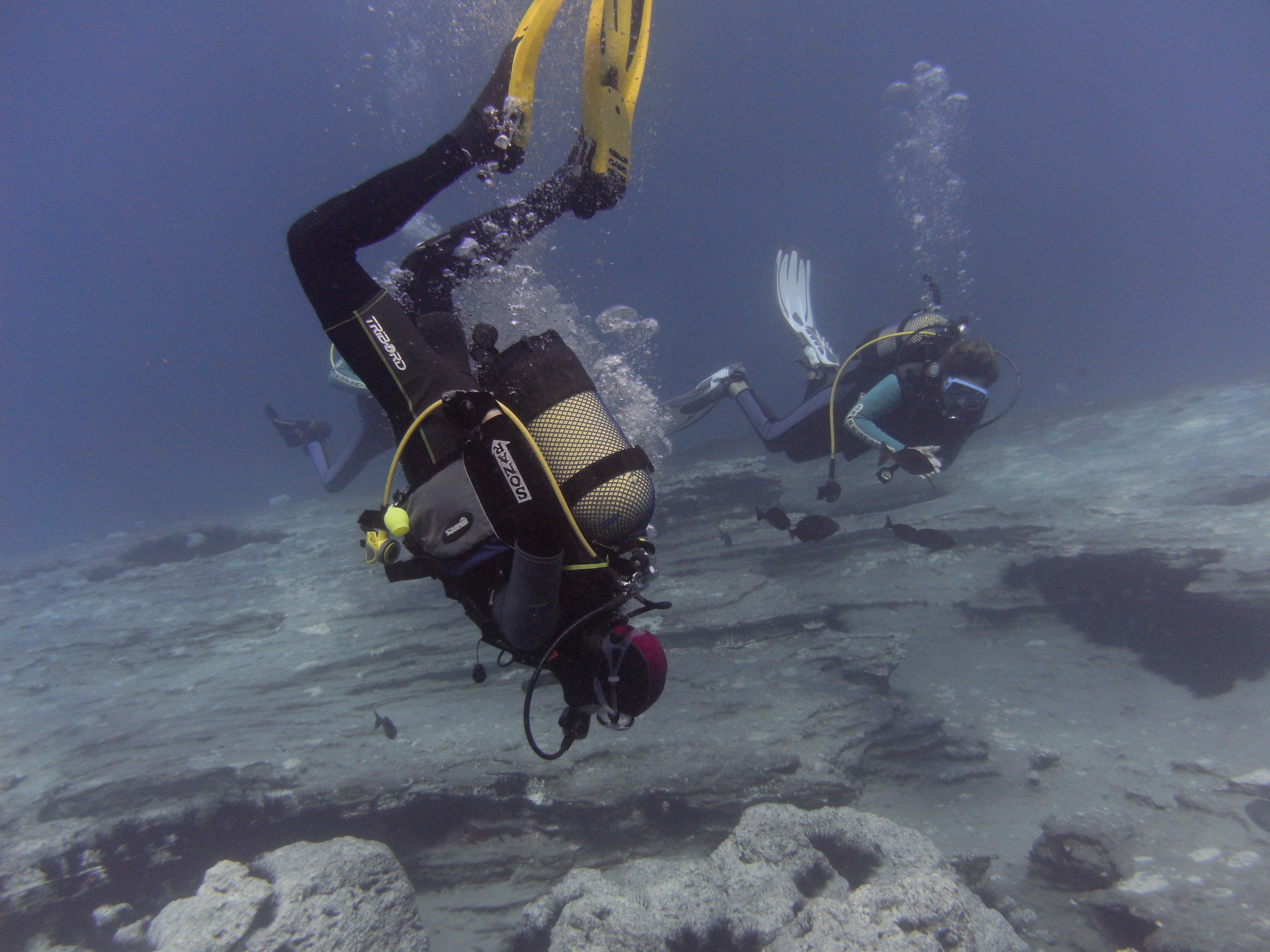 Diving-Tenerife-Divers-6