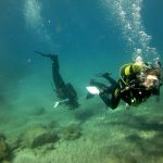 Diving-Tenerife-Divers (60)