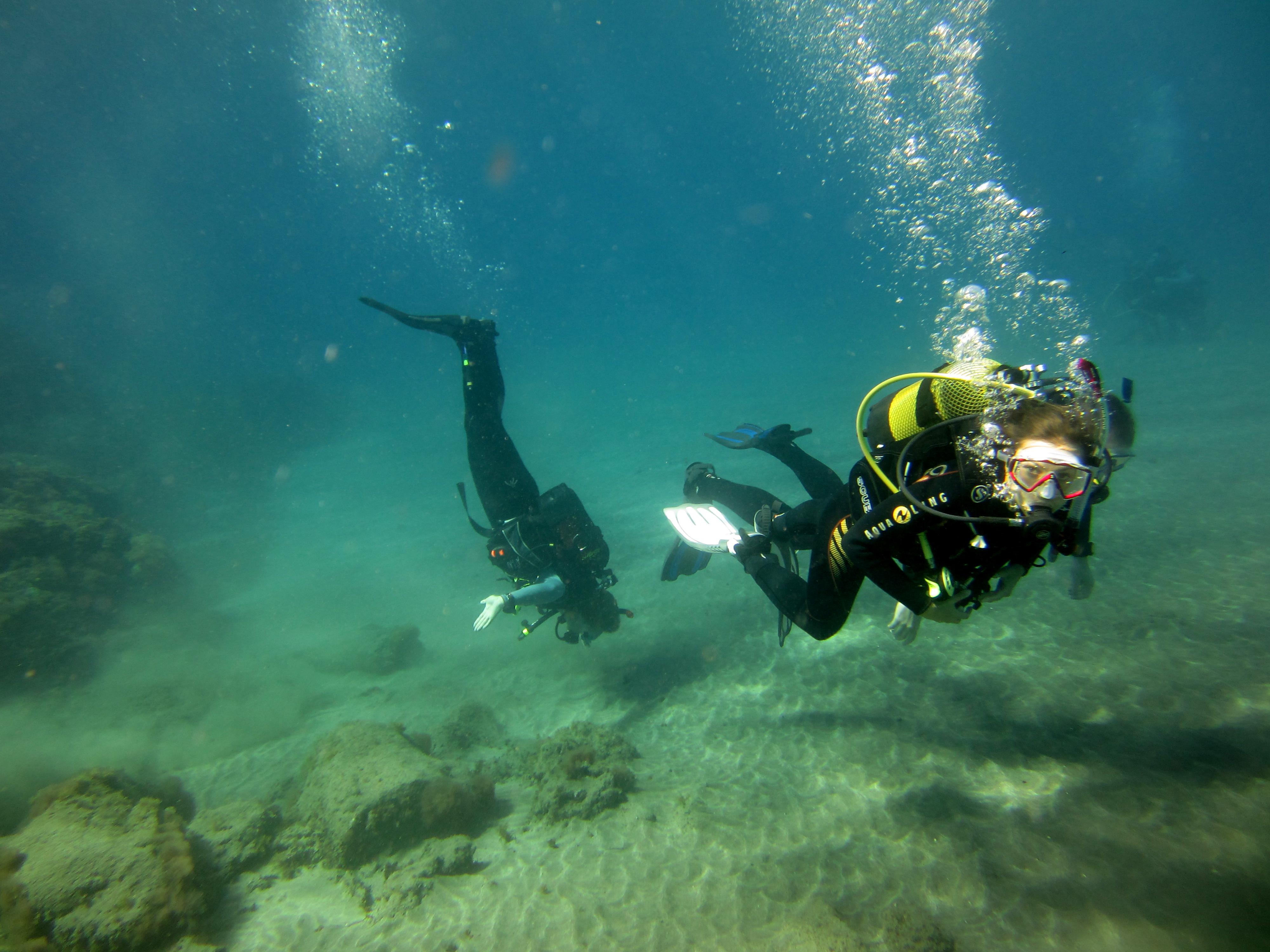 Diving-Tenerife-Divers (60)