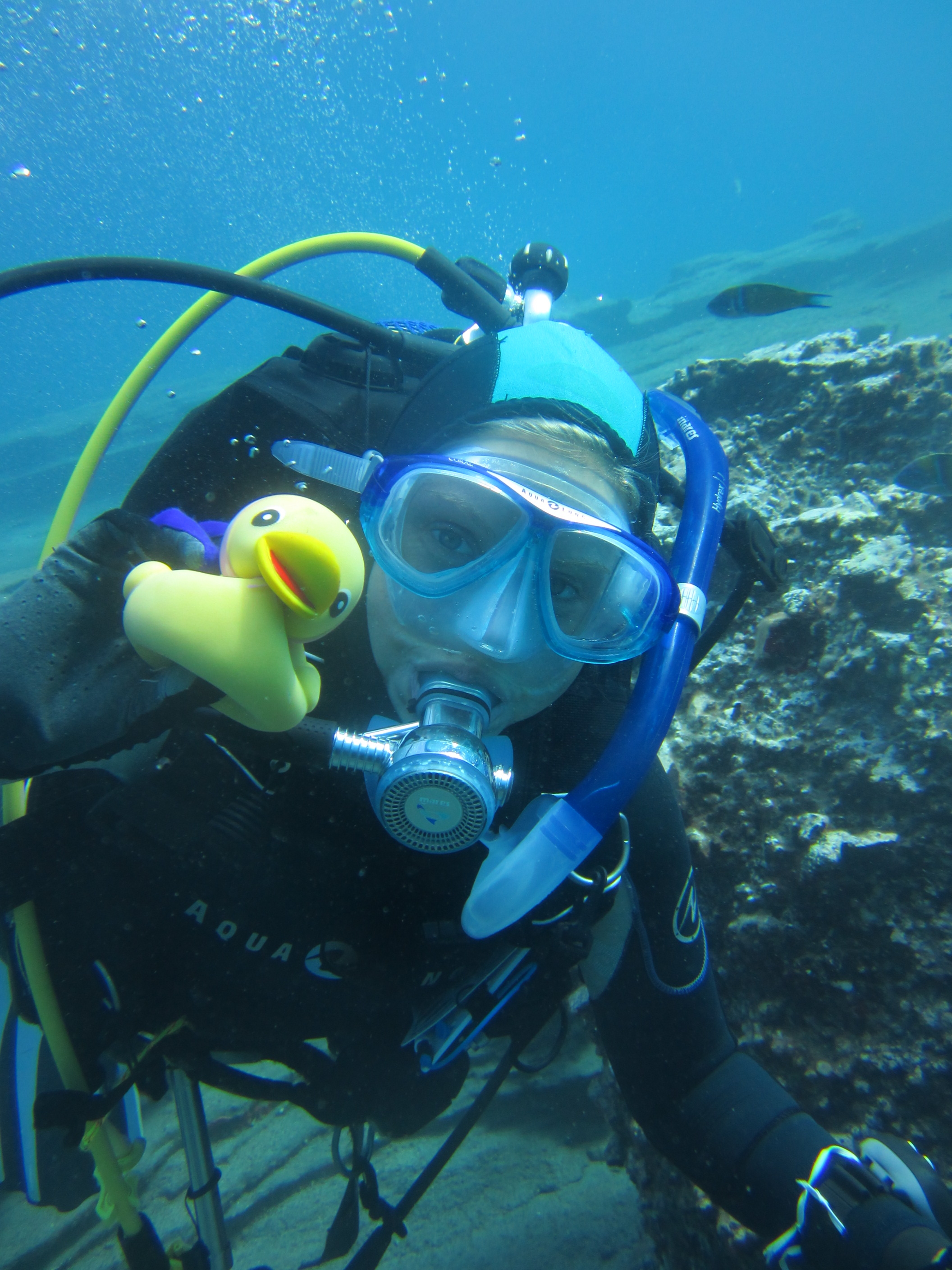Diving-Tenerife-Divers (76)