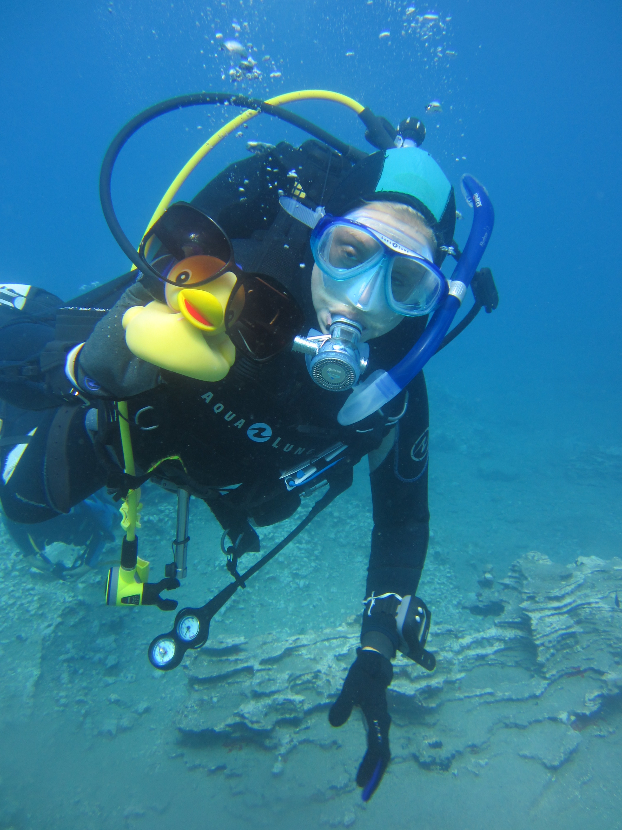 Diving-Tenerife-Divers (77)