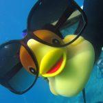 Diving-Tenerife-Divers (78)