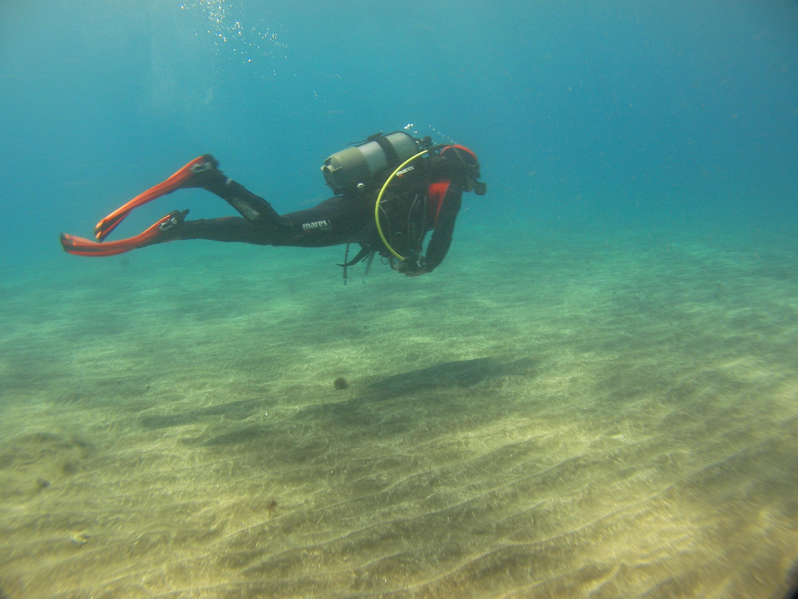 Diving-Tenerife-Divers-8