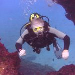 Diving-Tenerife-Divers-83