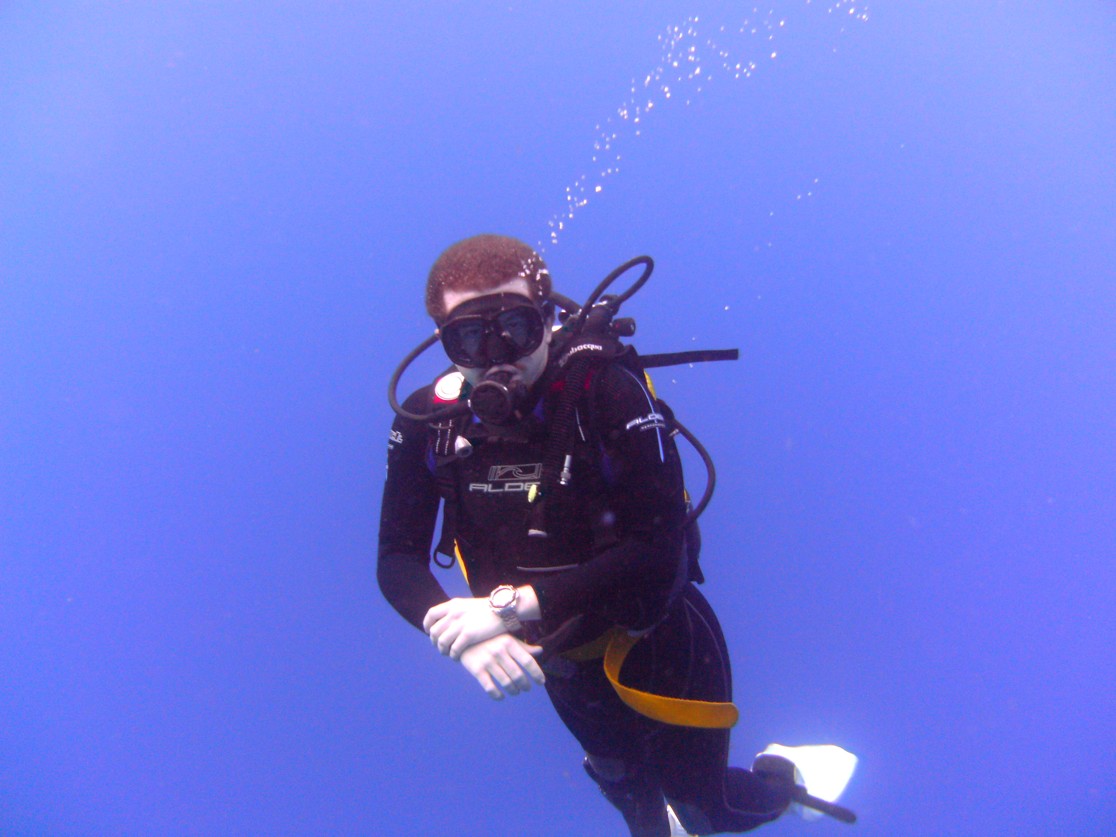 Diving-Tenerife-Divers-93