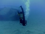 Diving-Tenerife-Diver