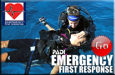 EFR Teneife Dive internship