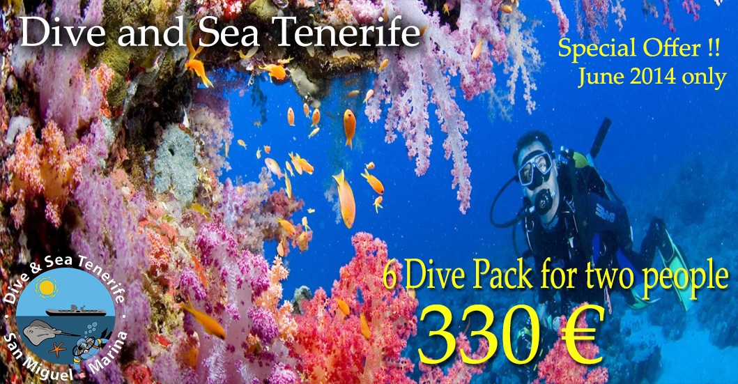 Special offer June 6 dive pack