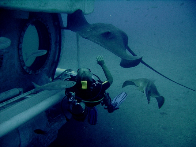 Submarine_diving_tenerife3