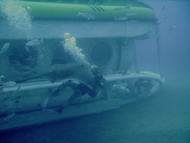 Submarine_diving_tenerife6