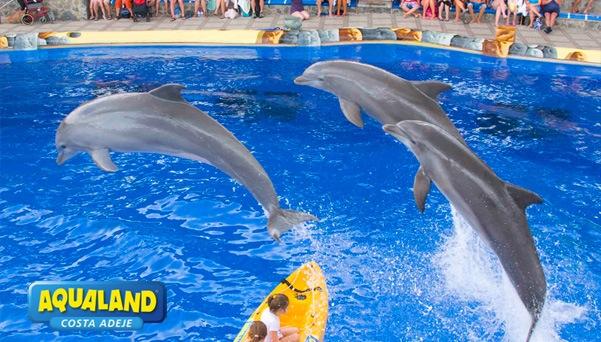 Tenerife-Excursions-Aqualand-3