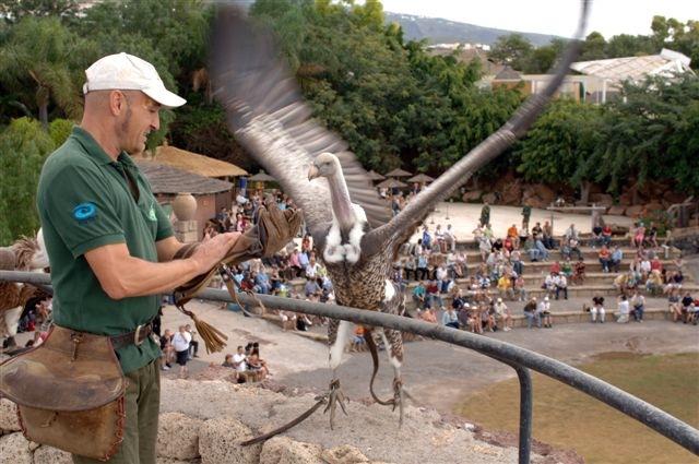 Tenerife-Excursions-Jungle-Park-1