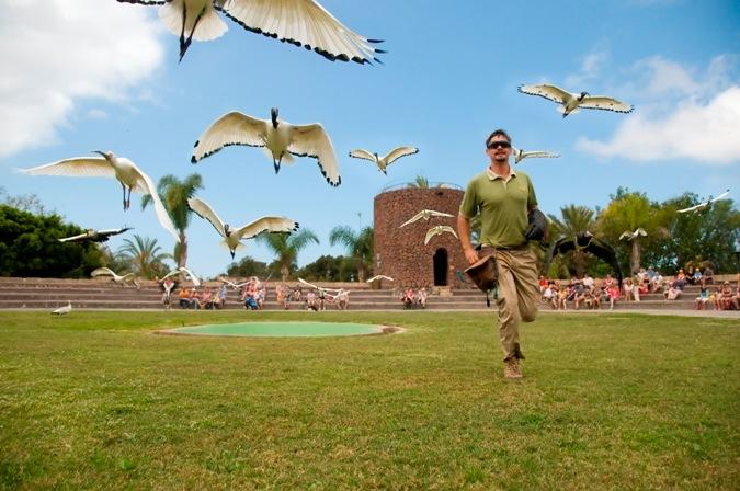 Tenerife-Excursions-Jungle-Park-2