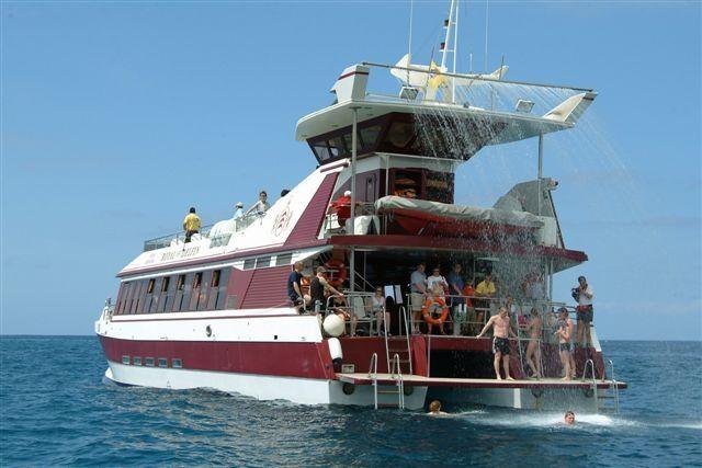 Tenerife-Excursions-Royal-Delfin-4